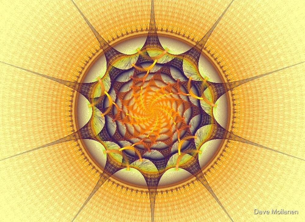 Follow the Sun by Dave Moilanen