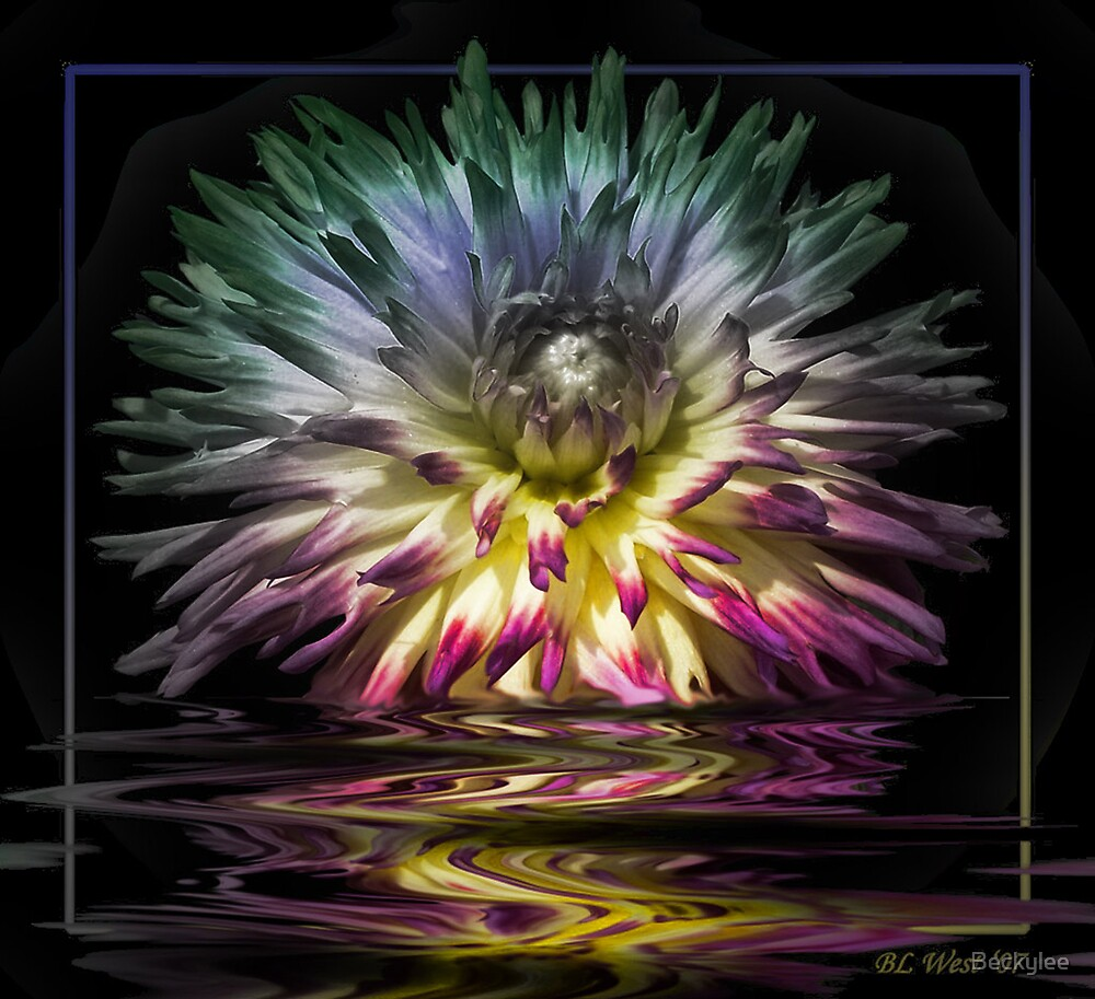 Electric Dahlia by Beckylee