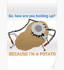 Portal - Because I'm A Potato Poster