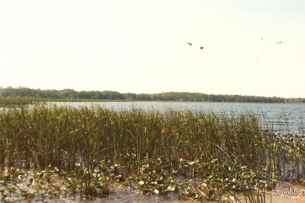 Lake Okeechobee Coast by karen66