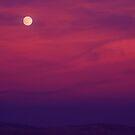 Moon Garden  by carlos reynosa