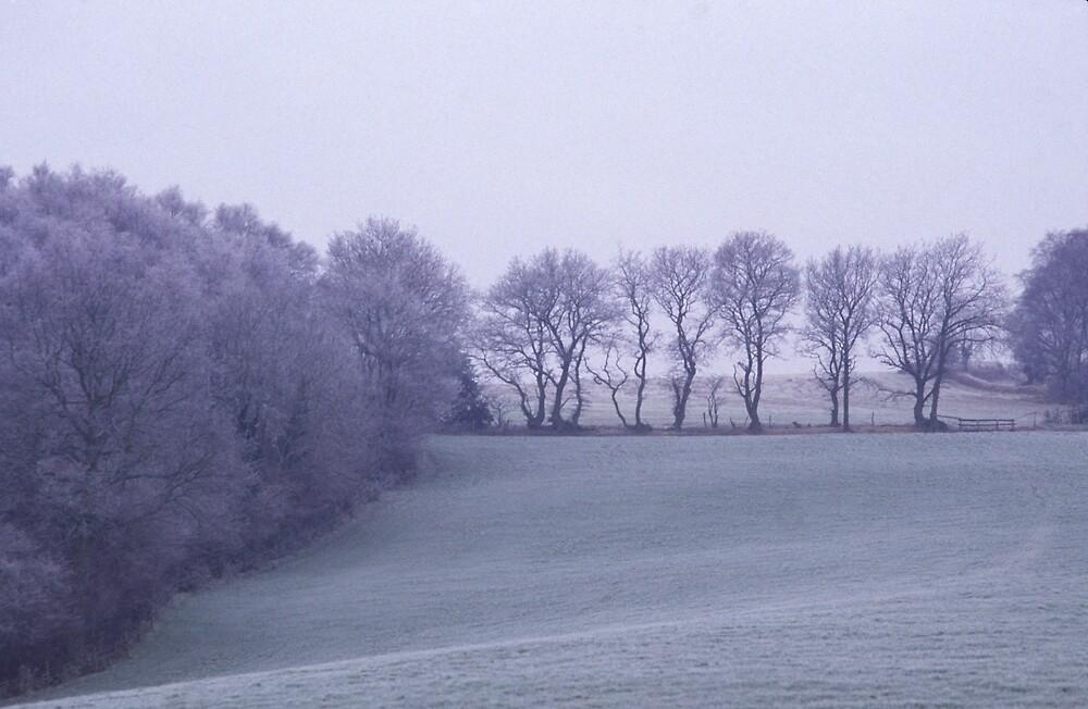 Mountfield in Winter by laurencedodd