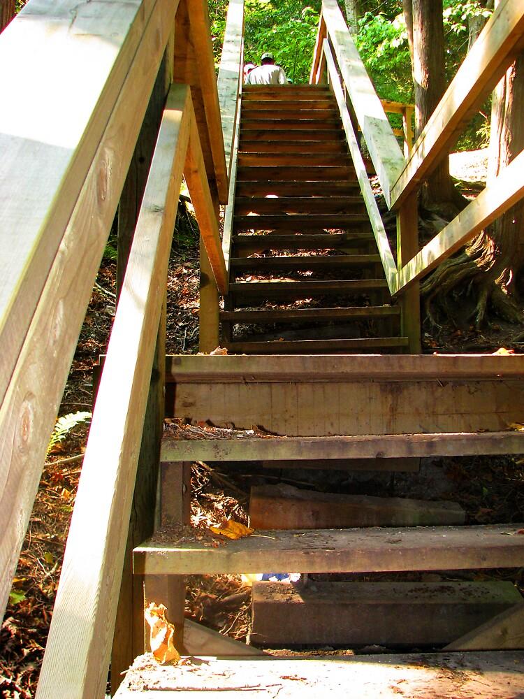 Stairway to Heaven by ashleymaiwoo