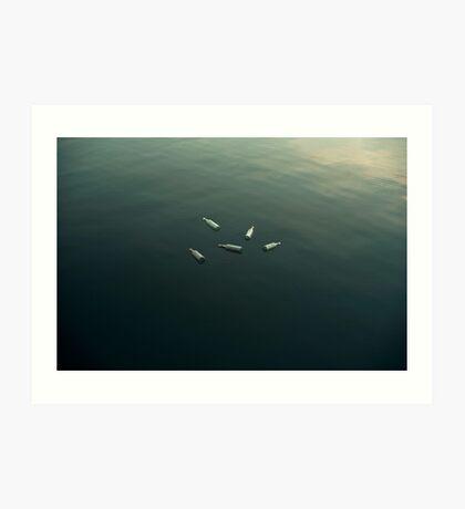 Schwimmendes Stillleben Kunstdruck