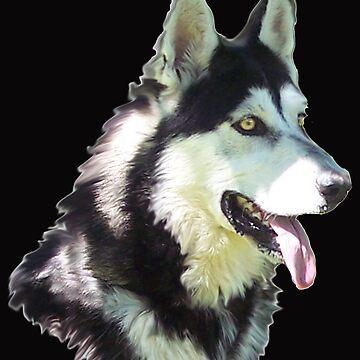 Zazu by timbrewolf
