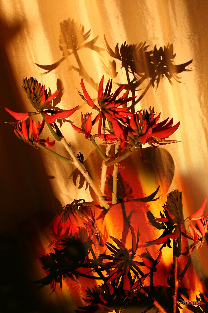 CORAL FLOWER AND FLAME by Paloma