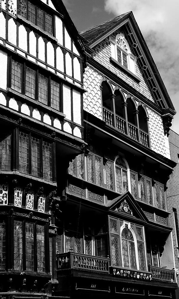 Tudor Houses Exeter UK by Johninmula