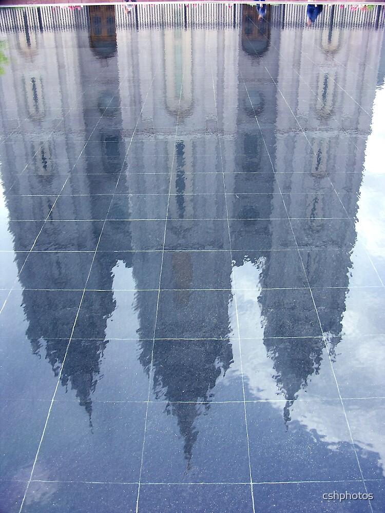 Mormon Temple by cshphotos