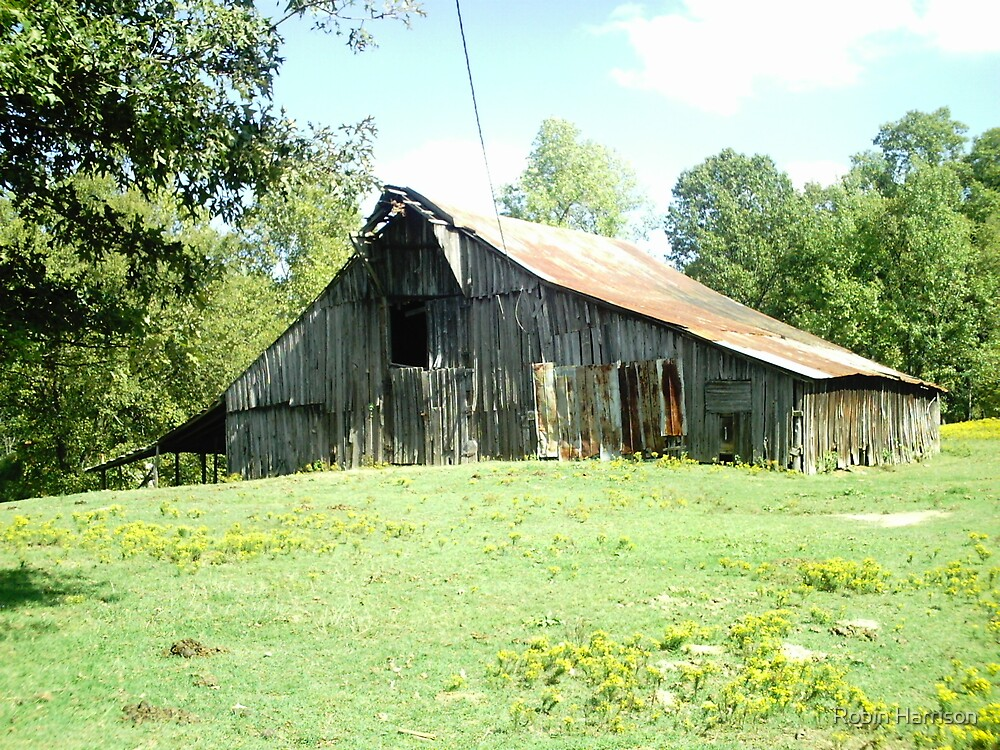 Country Barn by Robin Harrison