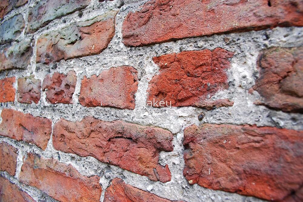 Bricks by shakey