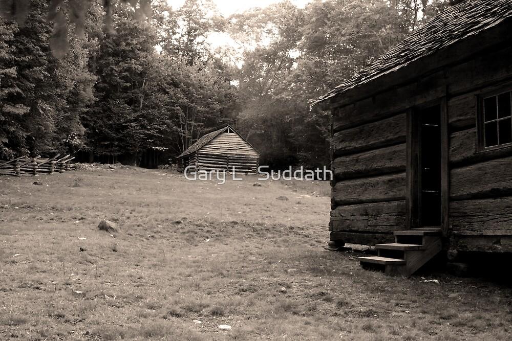 Appalachian Dawn  by Gary L   Suddath