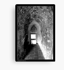 Looking through Canvas Print