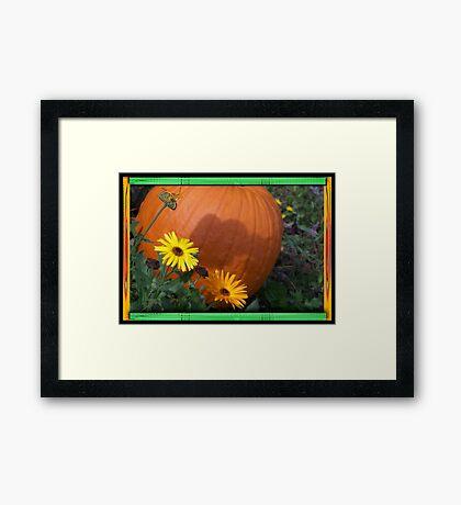 Country Bumpkins  Framed Print