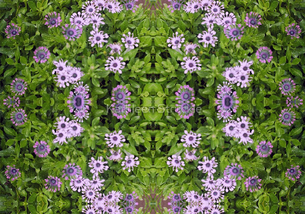 Floral Abstract by Kathleen Struckle