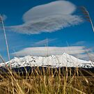 Snowy mountain with grass and clouds by Karen Stevenson
