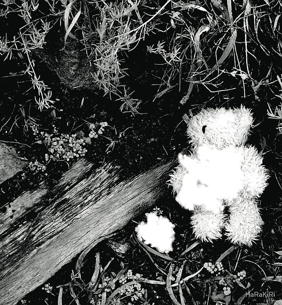 Teddy Bear by HaRaKiRi