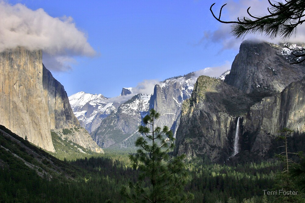 Yosemite After Storm by Terri Foster
