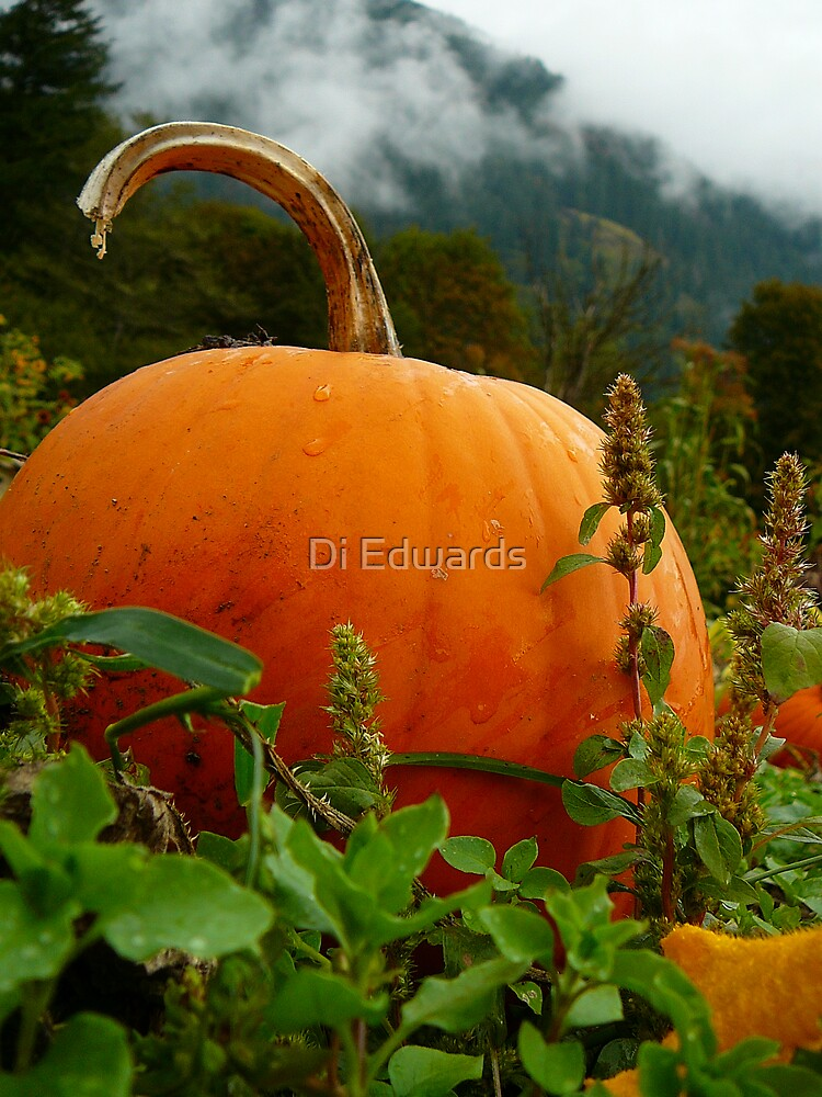 Halloween Approaches by Di Edwards