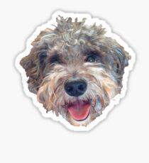 Cute Dog -- Schnoodle Sticker