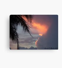 Florida Sky Canvas Print