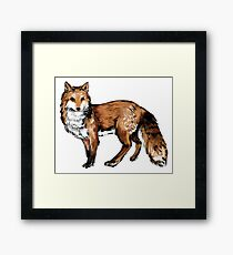 Ink Brush Fox Framed Print