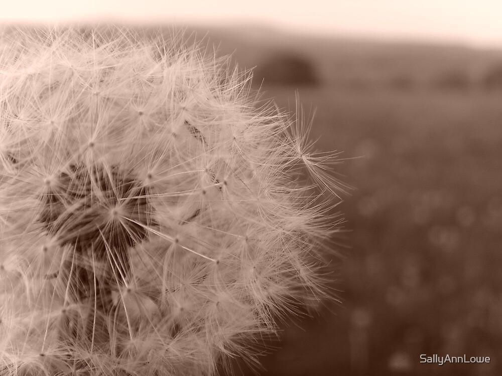 I Wish..... by SallyAnnLowe