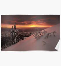 Snowy trees on background of amazing sunset in winter Carpathian Poster