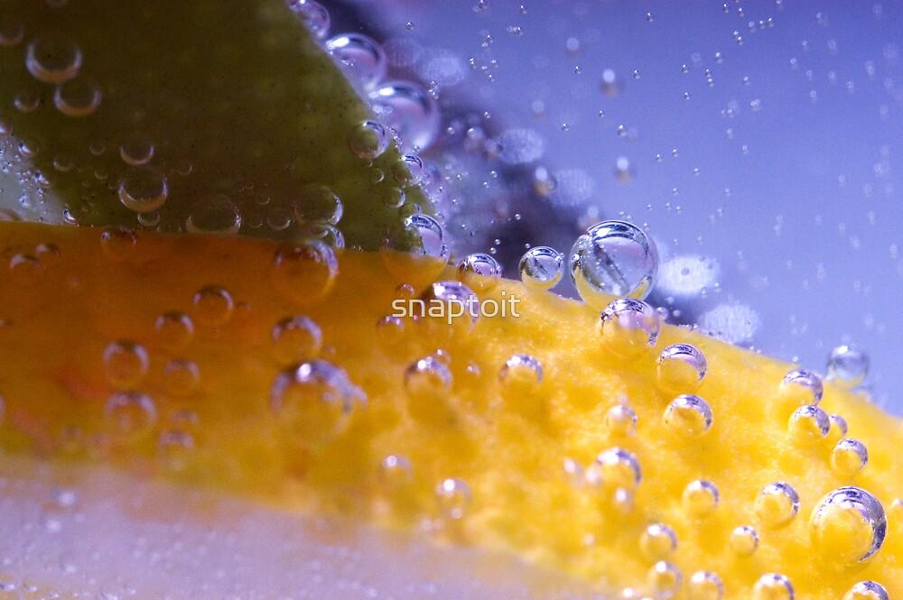 Lemon Lime 1 by snaptoit