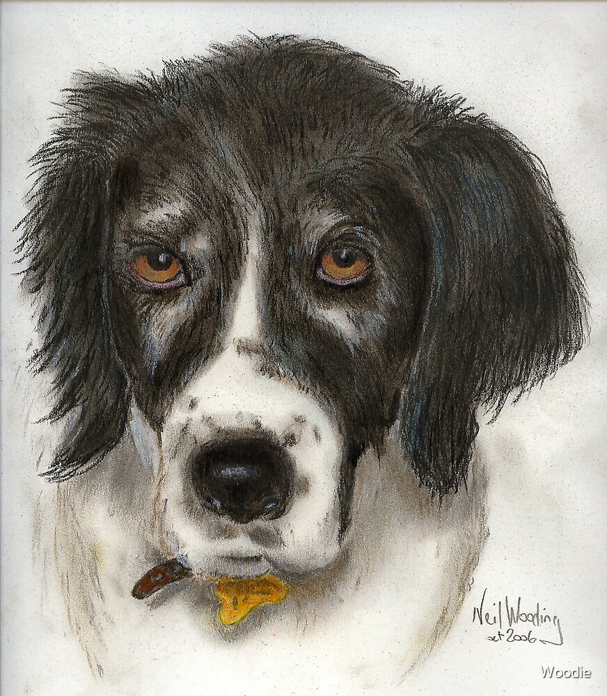 Sally in pastel by Woodie