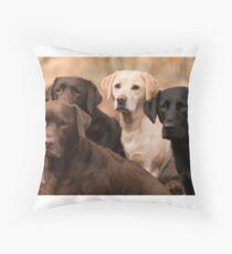 four labradors Throw Pillow