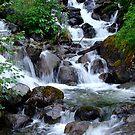 Waterfall - vertical by David Mann