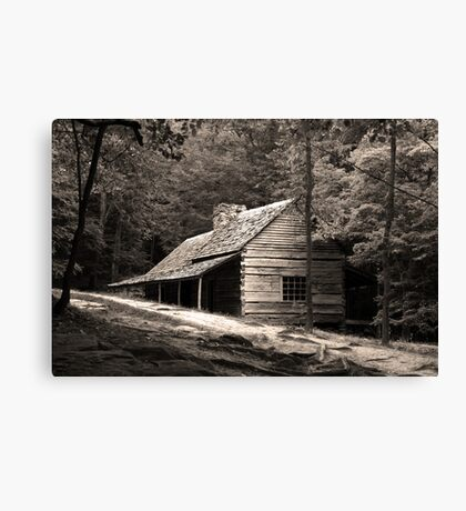 Smoky Mountain Hideaway  Canvas Print