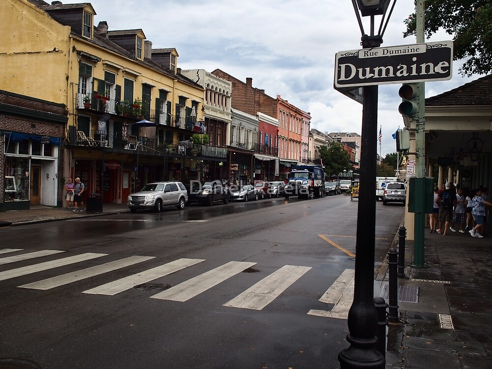 Rain Soaked Dumaine - New Orleans, LA by Daniel  Rarela