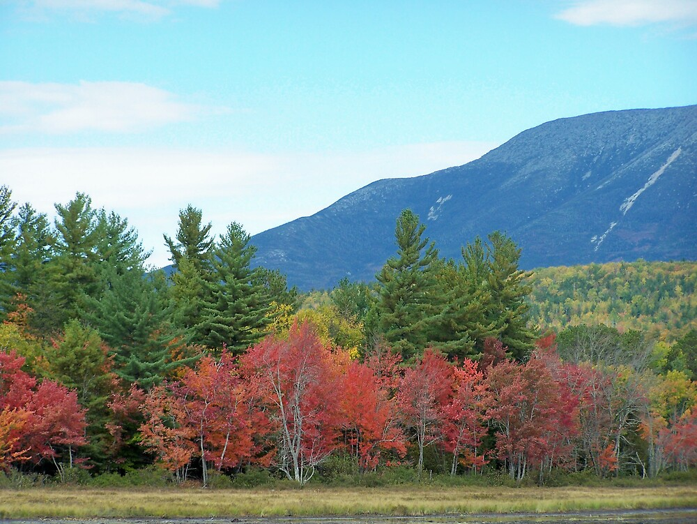 Autumn Mountain by Gene Cyr