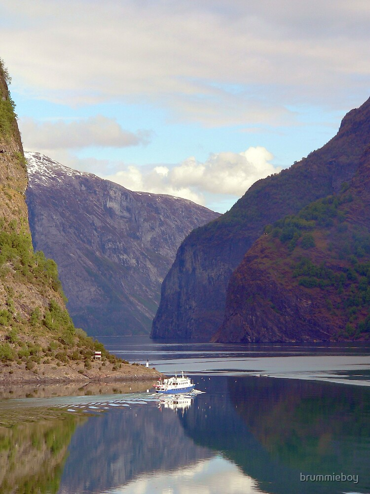 Norwegian Fjord by brummieboy