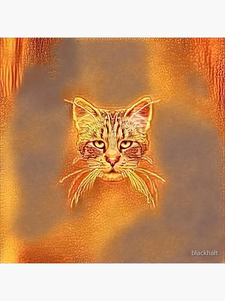 Golden Cat #Art by blackhalt