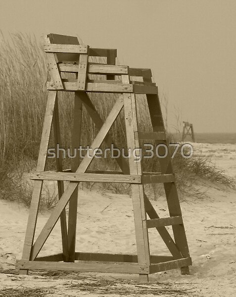 Guardian of the Sea by shutterbug3070