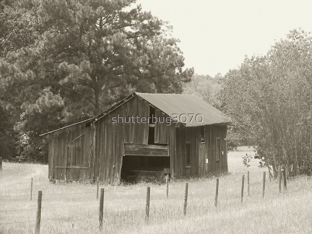 Old Southern Barn by shutterbug3070