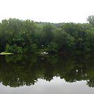 Rainy Day Delaware by JoJOlsen
