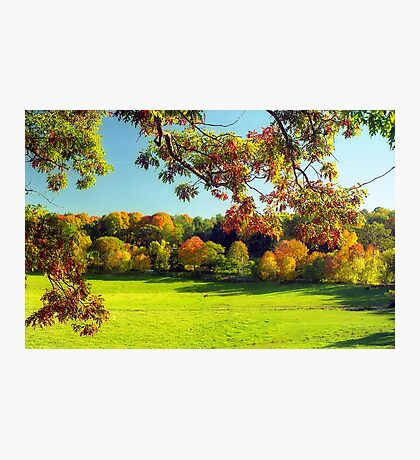 Autumn in Connecticut Meadow Photographic Print