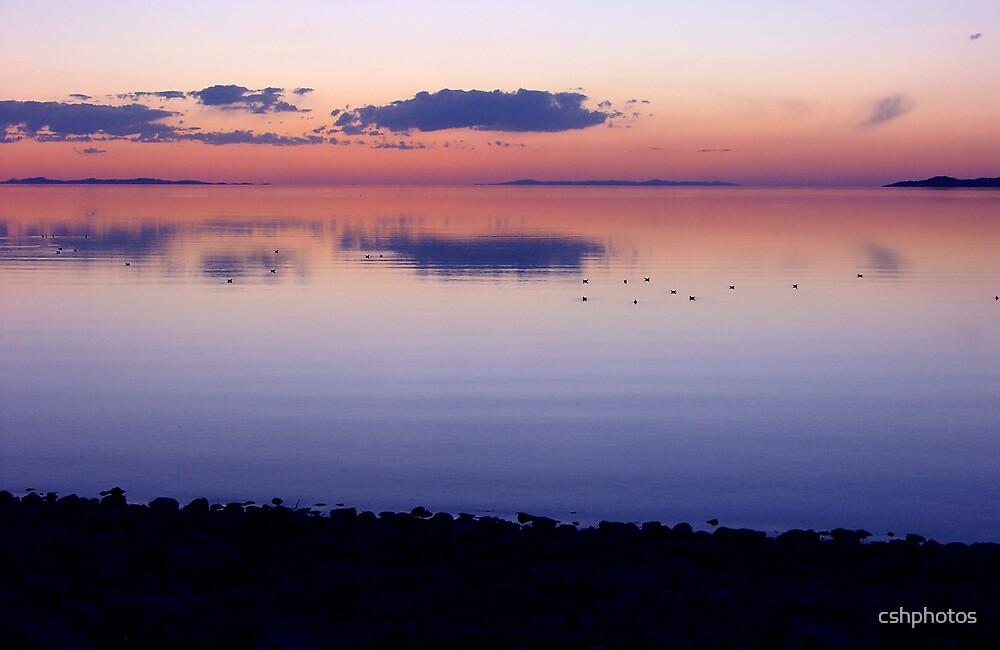Great Salt Lake  by cshphotos