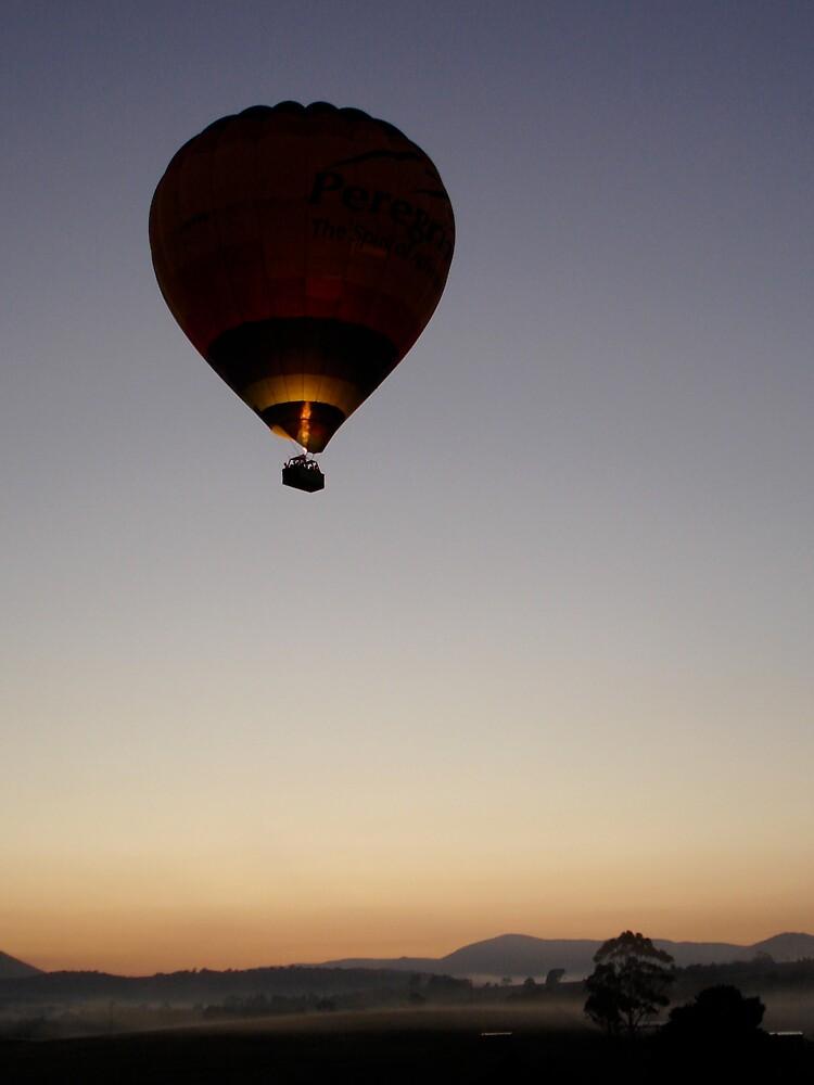 Early Morning Balloon by MichaelA