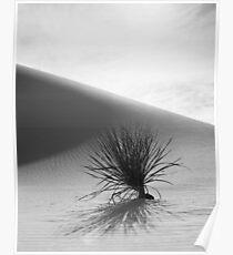 White Desert Poster