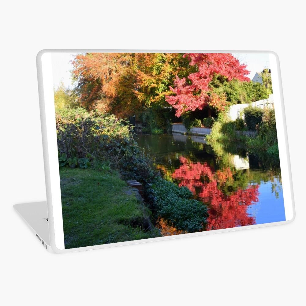 Autumn reflection Laptop Skin