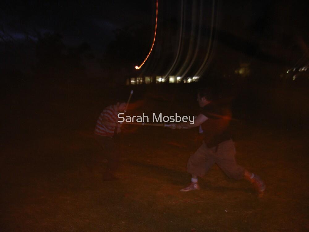 En Guarde!! by Sarah Mosbey