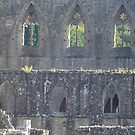 Tintern Abbey by Nick Woodbridge