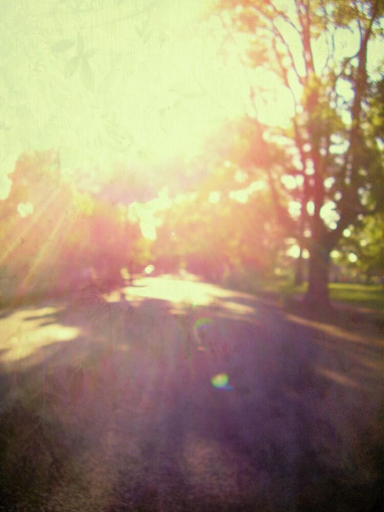 toward spring sun by Louise Richardson