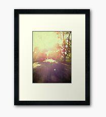 toward spring sun Framed Print