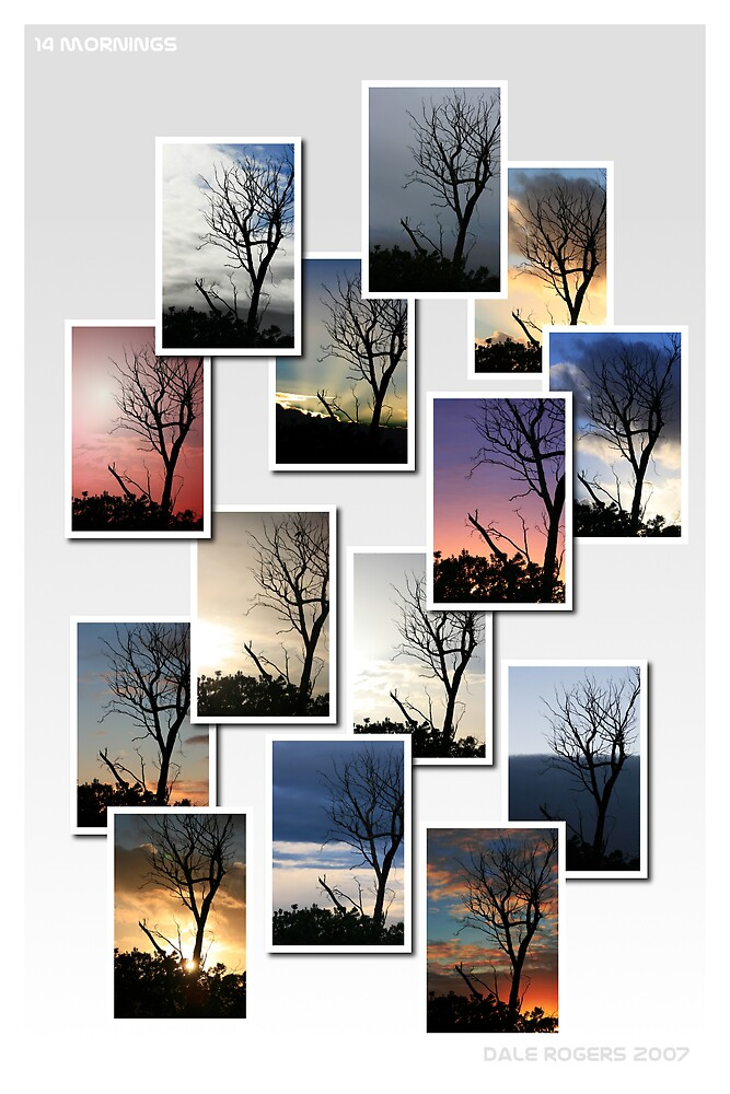 14 Mornings by Photo Rangers