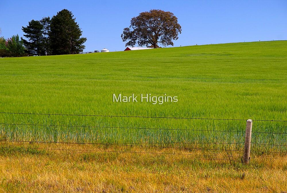 Beechworth Landscape by Mark Higgins